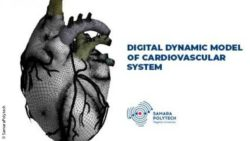 Image: Digital dynamic model of the heart; Copyright: SamaraPolytech