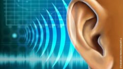 Image: illustration of a human ear and sound waves; Copyright: panthermedia.net/andreus