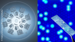 Image: Collage made of two images, one show a round, transparent plastic disc with micro channels, one shows a plastic chip; Copyright: Hahn-Schickard, Image Bernd Müller