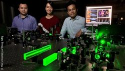 Image: three scientists behind the new optical imaging technology for 3D fluorescence microscopy; Copyright: The University of Hong Kong