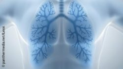 Image: image of a transparent human upper body with blue lungs; Copyright: panthermedia.net/iLexx