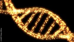 Image: dna string; Copyright: MIPT Press Office