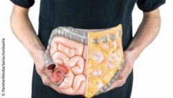 Image: Man is holding a plastic model of the colon in front of his stomache; Copyright: PantherMedia/benschonewille