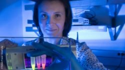 Image: A female researcher is holding small vials in her hand that glow in different colors - Lena Dolgosheina; Copyright: Simon Fraser University