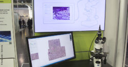 Image: Monitor with microscopic image next to a microscope; Copyright: beta-web / Schmitz