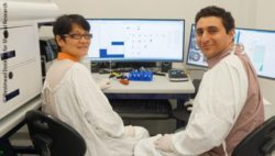 Image: A male and a female researcher in front of a laboratory bench; Copyright: Westmead Institute for Medical Research