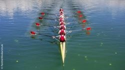Image: Image of a rowing eight from above; Copyright: PantherMedia/smuki