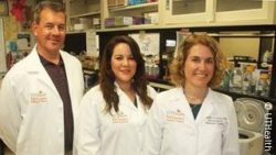 Image: Three scientists in a laboratory; Copyright: The University of Texas Health Science Center at Houston (UTHealth)
