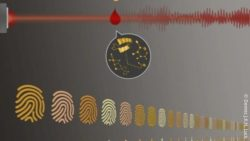 Image: Depiction of a blood drop and a laser beam next to different finger prints; Copyright: Dennis J.K.H. Luck