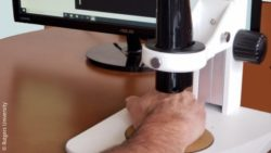 "Image: ""virtual biopsy"" device; Copyright: Rutgers University"